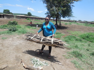 This is heavy! Picking up a Masai woman's load